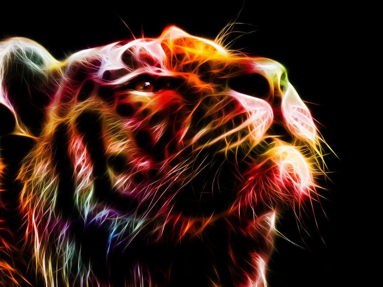 Fractal Tiger – Julia Wylie